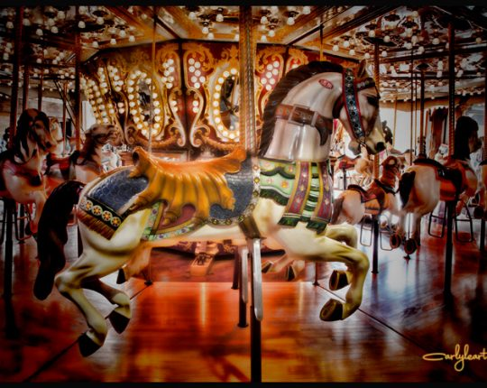Carousel Alive and Well in Seattle